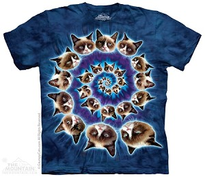 Grumpy Cat Spiral - Adult Tshirt - Cat / Kitten Collection